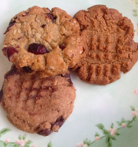 A peanut butter chocolate chip cookie, a cranberry oatmeal cookie, and a plain peanut butter cookie