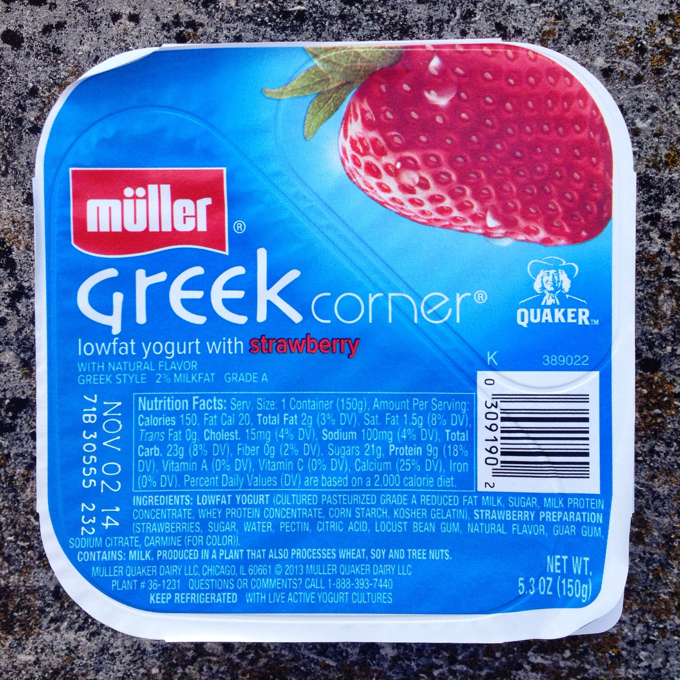 Sophia's Greek Yogurt Makes The World Go 'Round
