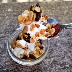 pic_1_yogurt_blog