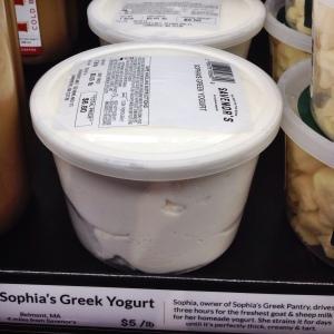 pic_7_yogurt_blog